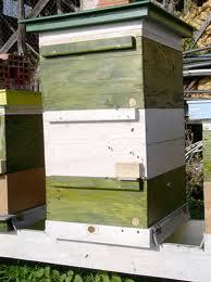 PČELA PROM NOVA VAROŠ